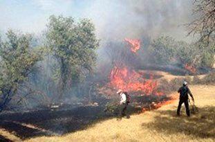 وقوع آتشسوزی در منطقه «جهاننما» کردکوی/ 8 هکتار مرتع طعمه حریق شد