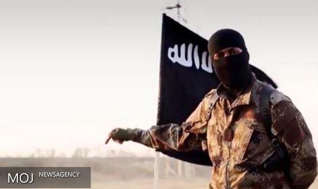 نقشه داعش برای انفجار در جنوب دیر الزور خنثی شد