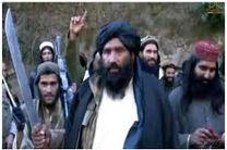 افزایش درگیری بین داعش و طالبان در مرکز افغانستان