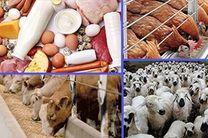 افزایش 1.4 برابری تولید محصولات دامی در استان اصفهان
