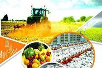 تولید سالانه 4/5 میلیون تن محصولات کشاورزی در اردبیل