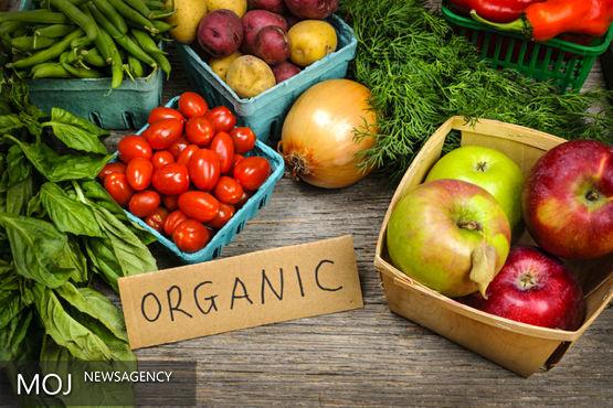 کشاورزی ارگانیک در برنامه ششم توسعه مورد توجه قرار گیرد