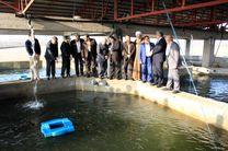 افتتاح 8 پروژه عمران روستایی در صومعه سرا