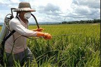 مصرف سموم کشاورزی ۴۰ درصد کمتر از میانگین جهانی
