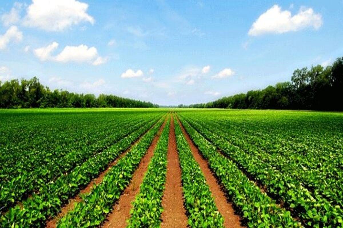 رونمایی از سه سامانه و هشت طرح جدید جهاد کشاورزی