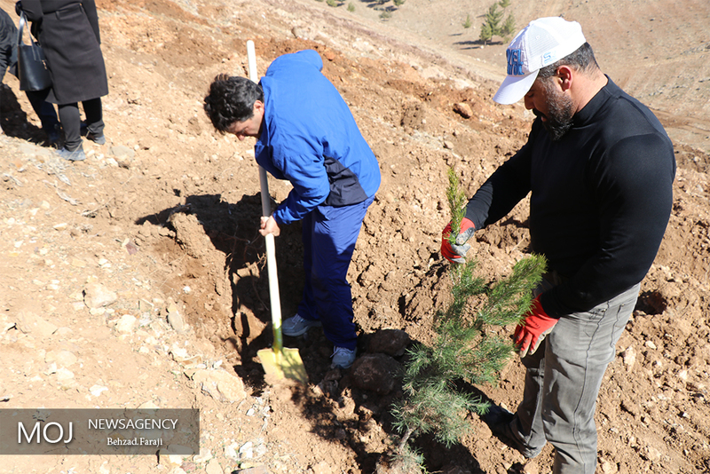 مدارس در نهادینه کردن درختکاری و حفظ منابع طبیعی بکوشند