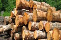 کشف 100 اصله الوار قاچاق جنگلی در اردبیل