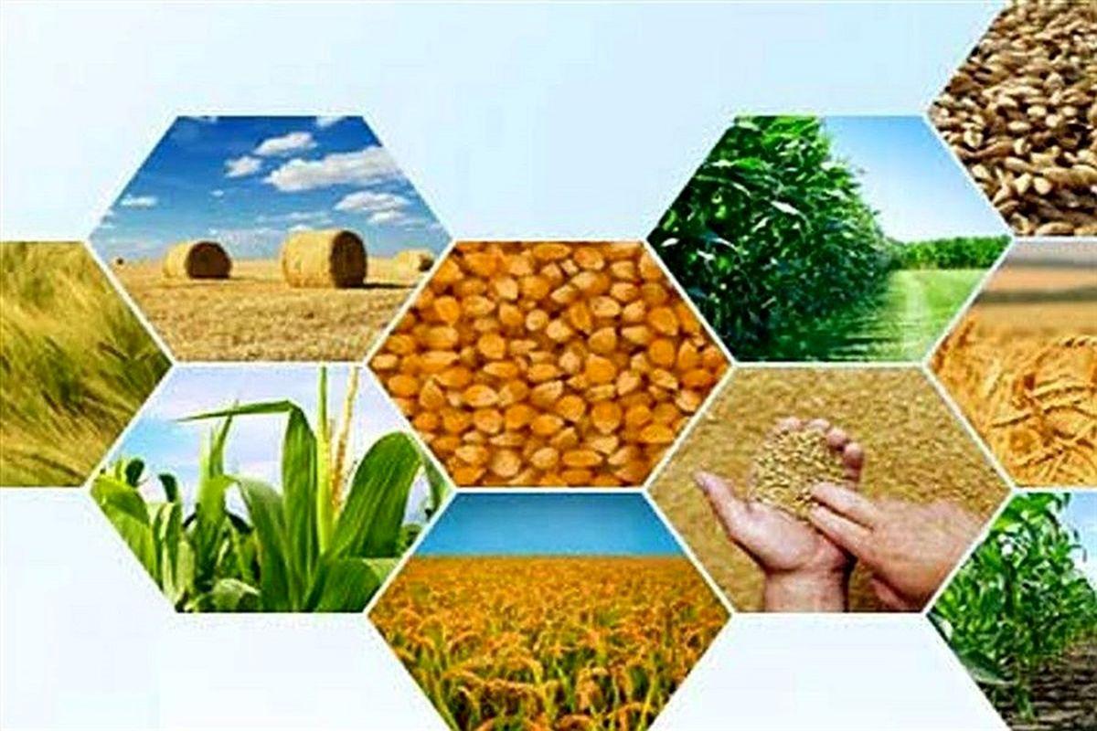 تورم تولید کننده زراعت و باغداری در پاییز ۹۹ اعلام شد