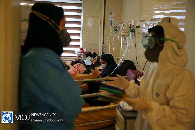 66 بیمار بدحال کرونایی در مراکز درمانی قم بستری هستند