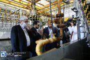 بازدید دبیر ستاد رفع موانع تولید کشور از شرکت تولید گوشت و مرغ