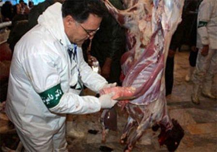 نظارت 108 اکیپ دامپزشکی خوزستان به مناسبت عید قربان
