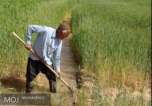 بازنشستگی کشاورزان و روستاییان پیش از موعد منتفی شد