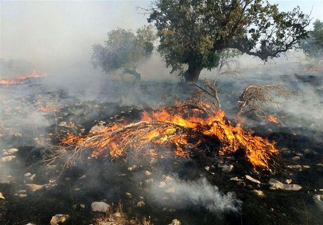 احتمال آتش سوزی در کل منطقه وجود دارد