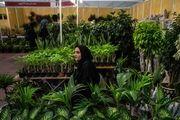 رامسر میزبان  125 مهمان داخلی و خارجی در سمپوزیوم بین المللی گل و گیاه