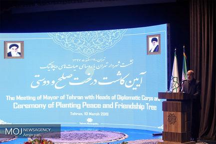کاشت نهال صلح و دوستی