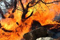 هفت هزار نیروی ارتشی و سپاهی برای اطفای حریق جنگل های لرستان آماده اند