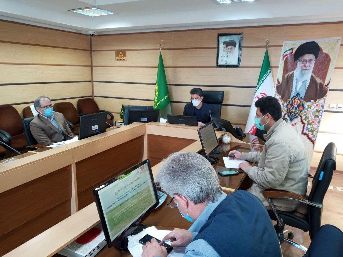 ۱۷۱ هزار هکتار از اراضی دیم کرمانشاه تحت پوشش طرح جهش تولید قرارگرفتهاند