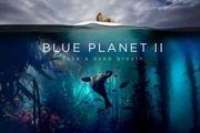 مستند سیاره آبی 2 با موضوع زندگی دریایی از شبکه چهار پخش میشود