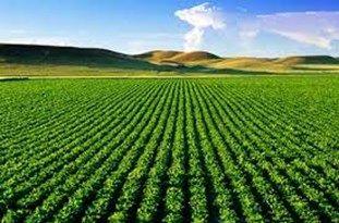 توصیههای 6 روزه هواشناسی کشاورزی