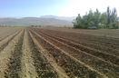 اهدای رایگان سند زمینهای کشاورزی به مردم میامی سمنان