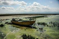 بودجه رفع مشکلات خلیج گرگان هنوز اختصاص نیافت