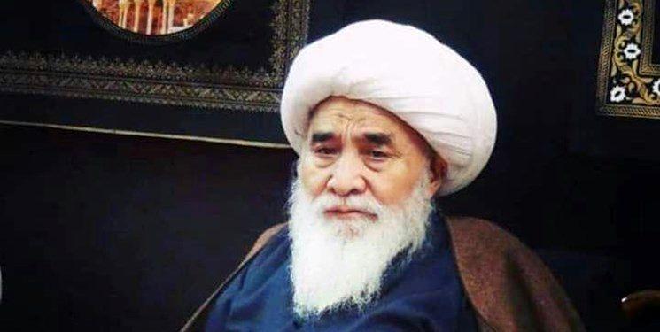 جزئیات تشییع پیکر آیتالله محقق کابلی اعلام شد