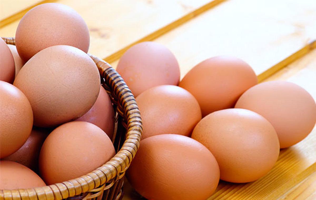 عرضه گسترده تخم مرغ در سراسر کشور با نرخ جدید