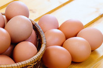 تخم مرغ ۵.۵ درصد کاهش قیمت یافت
