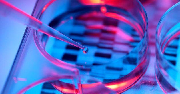 ساخت کرم ضد آفتاب با استفاده از DNA