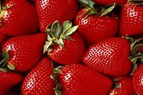 ترکیبات توتفرنگی اثرات روانی پیری را کاهش میدهد