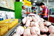 چالش های وزیر  جدید جهاد برای ساماندهی بازار مرغ