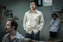 توزیع فیلم برتر جشنواره فجر در نمایش خانگی