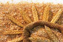 بهبود خواص سرامیک های دما بالا با سبوس برنج