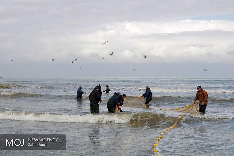 هشدار سازمان هواشناسی نسبت به مواج شدن دریای خلیج فارس و خزر