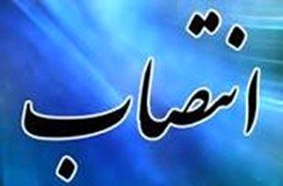 سرپرستی معاونت هنری حوزه هنری منصوب شد