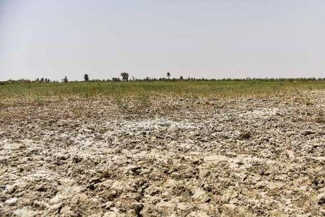 خسارت کشاورزان یونانی از خشکسالی های پیاپی