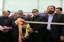 شهرک گلخانه ای درخمینی شهر افتتاح شد