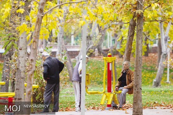 شایع ترین علت مرگ ناشی از آسیب ها در سالمندان به دلیل زمین خوردن است