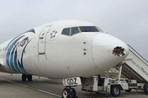 فرزانه شرفبافی به عنوان مدیر عامل جدید شرکت هواپیمایی جمهوری اسلامی ایران معرفی شد