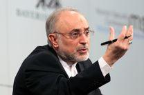 صالحی: ایران رقیب ریشه ای آمریکا است