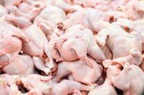 تولید ۶۵ هزار تن گوشت مرغ در کشور در ۱۰ روز پایانی خرداد ۱۴۰۰