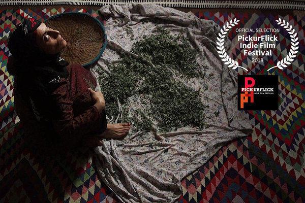 نمایش فیلم کوتاه فروزان در یک جشنواره هندی