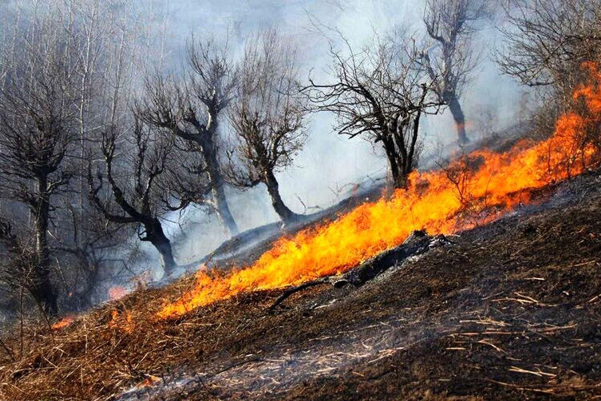 کاهش ۷۰ درصدی آتشسوزی در طبیعت خراسان رضوی