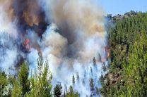آتشسوزی در جنگلهای اندبیل خلخال مهار شد