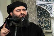 ابوبکر البغدادی به احتمال قوی کشته شده است