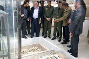 مرکز آموزش بین المللی مین زدایی با حضور امیر حاتمی افتتاح شد