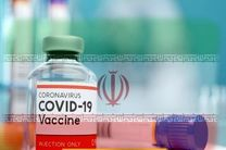 توزیع واکسن ایرانی کرونا از اوایل تیرماه