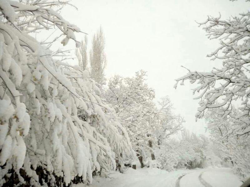 کاهش 4 تا 8 درجه ای دمای هوا در استان اصفهان