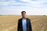 70 هزار هکتار قرق مراتع برای جلوگیری از گرد و غبار اطراف دریاچه ارومیه