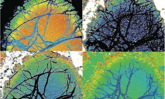 کشف داغترین جریان مواد مذاب طی 2.5 میلیارد سال گذشته